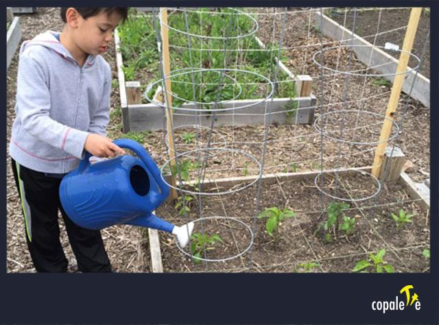 garden-web-01