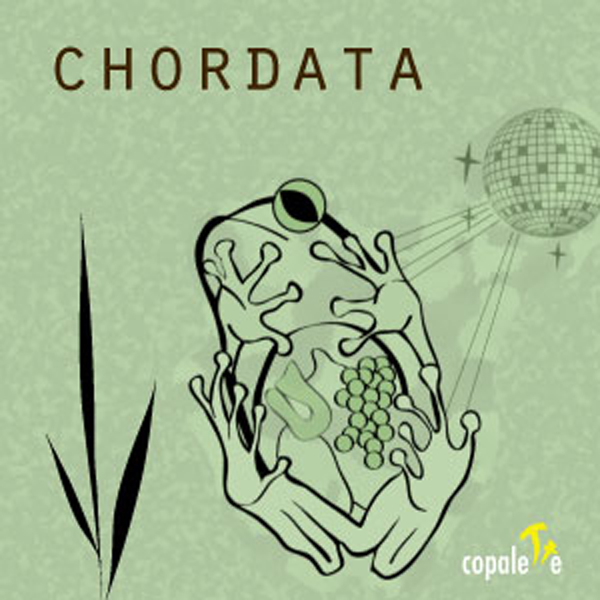 Chordata: Animal Classification Game