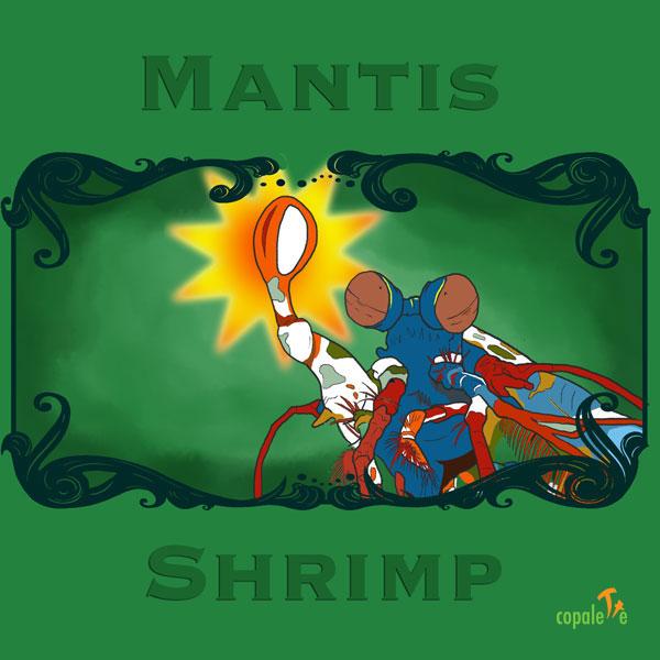 Mantis Shrimp: Custom Animal Art Trading Card