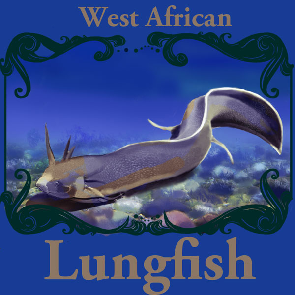 West African Lungfish: Custom Animal Art Trading Card